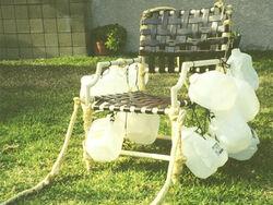Lawn chair larry