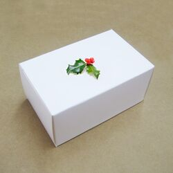 White-Gift-Box-for-Electronic-Products-BYZ-022-