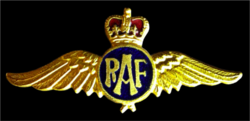 RAF pin