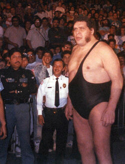 Andre in the late '80s