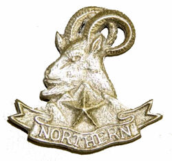 Badge of Northern Light Infantry