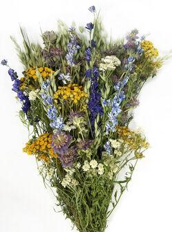 Dried meadow bouquet