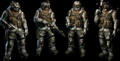 Arctic Squad Skin