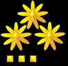 Rank2 48