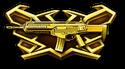 Beretta ARX160 Warbox
