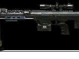 AMP DSR-1