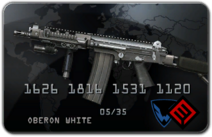 FN FAL DSA-58 coin