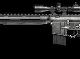 M16 SPR Custom