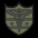 Challenge badge 29