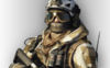 Rifleman Arctic Squad Skin