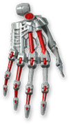 Chromium Hands Module Render