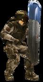 Shield hard