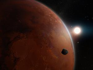 Mars Survival
