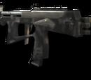 PP-2000