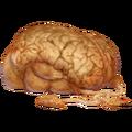Мозг Норги вики