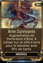 Âme Survivante