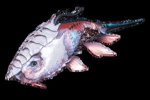 MortusLungfish