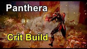 Panthera Updated Crit Build (Warframe)