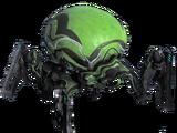 Raknoïde Mite