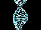 Генетический Код Каватов