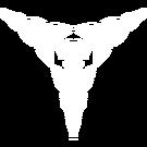 Znak Ukrycia