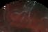Veil ProximaCutout