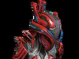Trinity-Helm: Ancyra