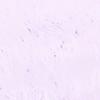 Anti Moa púrpura