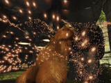 Howl of the Kubrow