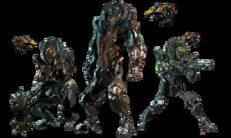 Los tres Grustrag
