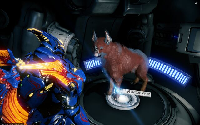 File:Kubrow after patch.jpg