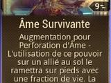 Perforation d'Âme