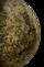CérèsU9side