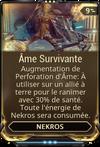 Ame Survivante