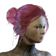 HairTBun