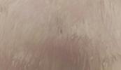 Grinlock marrón