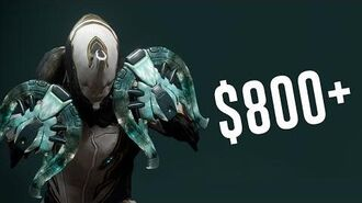 The Most Expensive Items in Warframe! (Warframe)