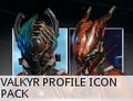 MarketValkyrProfileIconPack