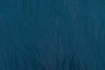 Azul Wukong