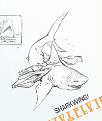 Sharkwing