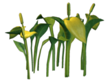 Księżycowy Jadeitowy Liść