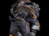 Saltador