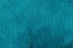 Azul Vándalo