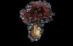 Маленькое дерево Магнолия вики