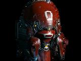 Shield-Hellion Dargyn