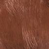 Marrón Rhino