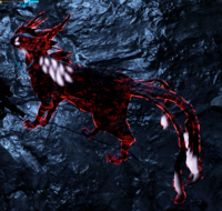 Kavat infecté