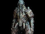 Hydroid-Skin: Unsterblich