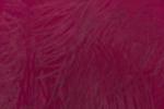 Rojo Ignis