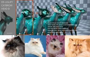 Dev81-cat1